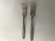Fork_0403